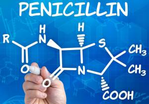 Side Effects of Penicillin for Dogs