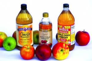 Can Dogs Have Vinegar? Is It Harmful for Pet?