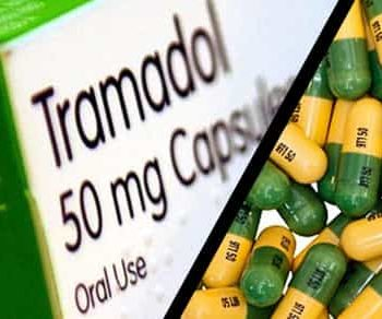 Tramadol Dosage for Dogs
