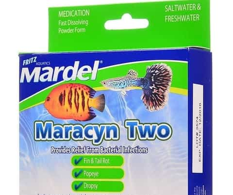 Maracyn (form of tetracycline to treat a number of fish diseases